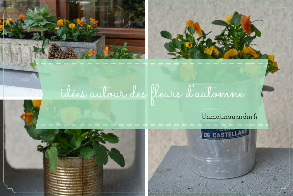 4 façons de présenter vos fleurs d'automne (récup, terre, zinc ou classique ?)