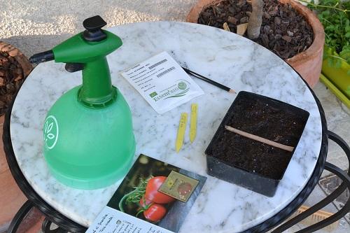 les courgettes tomates salades graines ou plants un matin au jardin. Black Bedroom Furniture Sets. Home Design Ideas