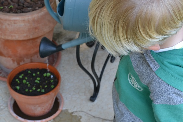 Comment bien jardiner avec les enfants ? livre et ressources