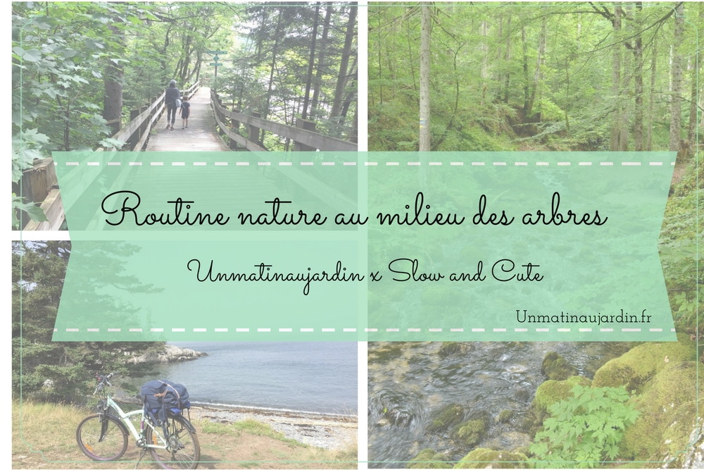 Routine nature au milieu des arbres : rencontre avec Slow and Cute
