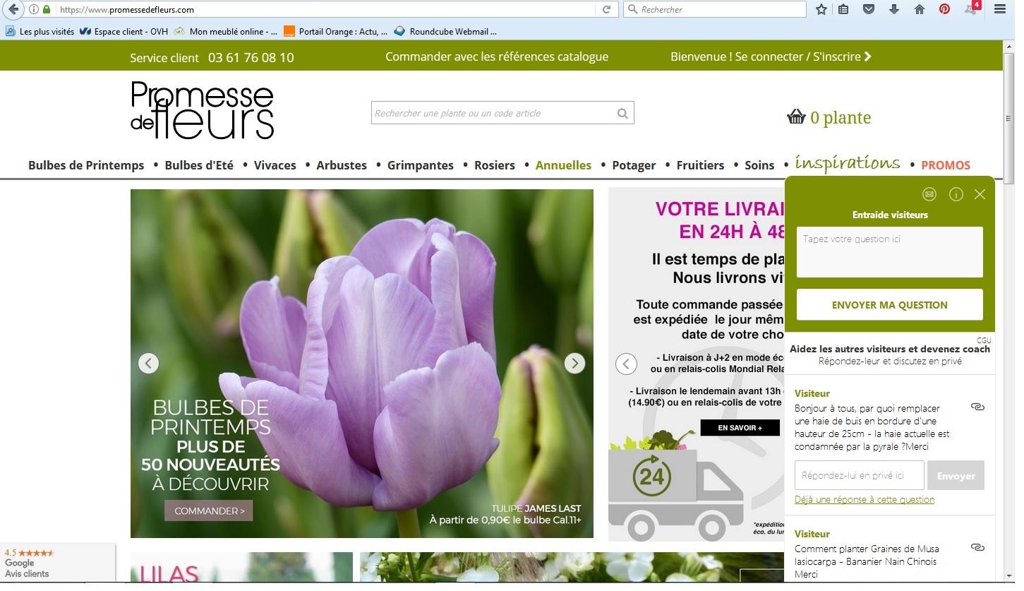 écran d'accueil Promesse de Fleurs