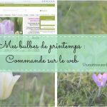 article commande de bulbes de printemps chez Promesse de Fleurs