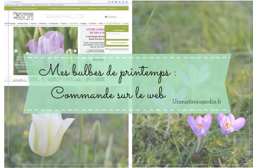 Commander des bulbes de printemps chez Promesse de Fleurs : mon avis