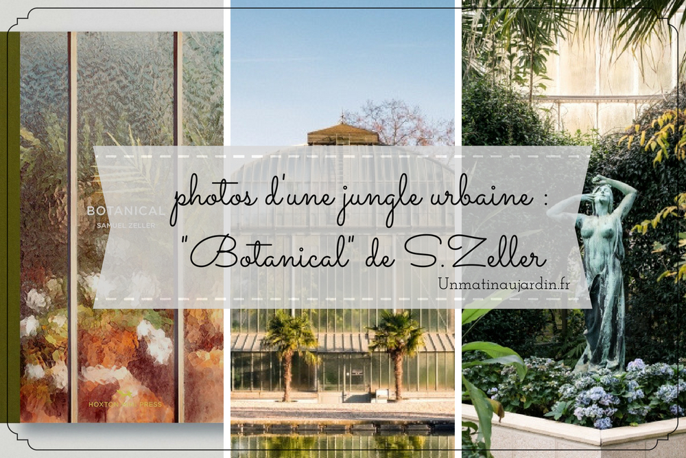 Botanical : la jungle urbaine du photographe Samuel Zeller