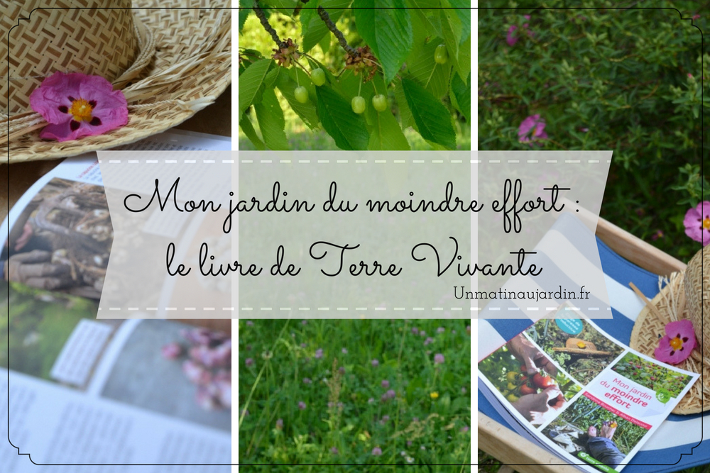 «Mon jardin du moindre effort» aux éditions Terre Vivante : mon avis