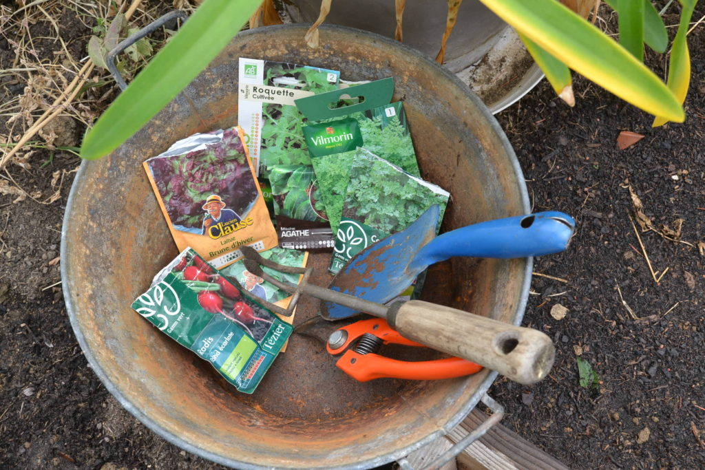 semis tardifs sous serre : roquette, radis, laitue, cerfeuil et mache