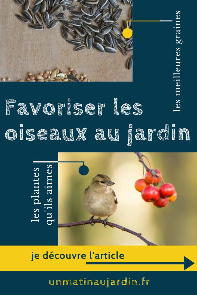 Découvrez la meilleure façon d'attirer et favoriser les oiseaux au jardin