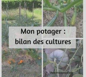 article bilan sur les cultures au potager