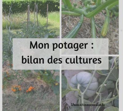 Quelles cultures pour le potager cette année ?