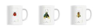 mugs insectes style cabinet de curiosités