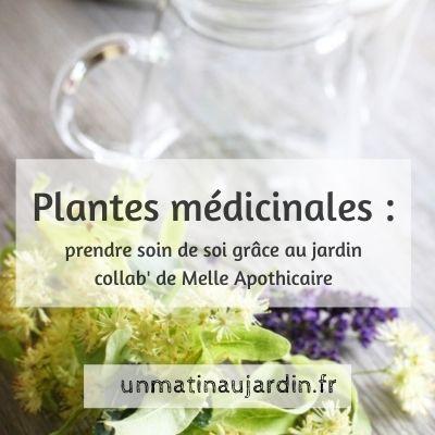 Prendre soin de soi avec les plantes du jardin