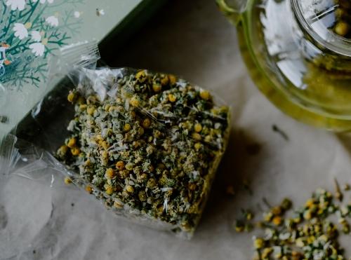 Cultiver la camomille : une plante médicinale facile et utile pour le foie